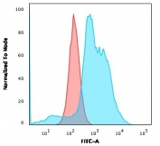 Flow cytometry testing of fixed human SK-BR-3 cells with B7-H4 antibody (clone B7H4/1788); Red=isotype control, Blue= B7-H4 antibody.