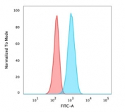 Flow cytometry testing of FPA fixed human U-87 MG cells with Carbonic Anhydrase IX antibody (clone CA9/3405); Red=isotype control, Blue= Carbonic Anhydrase IX antibody.