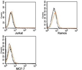 Rabbit IgG isotype control antibody FACS human samples