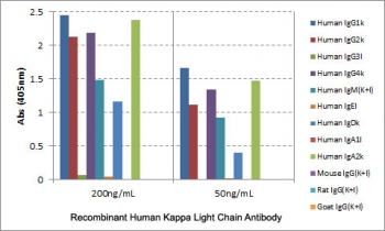 ELISA of human immunoglobulins shows the recombinant Human Kappa Light Chain antibody reacts to the kappa light chain of human immunoglobulins. No cross reactivity with the lambda light chain, mouse IgG, rat IgG, or goat IgG. The plate was coated with 50 ng/well of different immunoglobulins. 200 ng/mL or 50 ng/mL of RM126 was used as the primary and an alkaline phosphatase conjugated anti-rabbit IgG as the secondary.