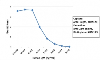 Sandwich ELISA of human IgM using the recombinant Human IgM antibody as the capture (100ng/well), and biotinylated anti-human light chains (κ+λ) antibody RM129 as the detect, followed by an alkaline phosphatase conjugated streptavidin.
