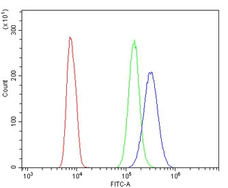Flow cytometry testing of human HL60 cells with ABCB5 antibody at 1ug/million cells (blocked with goat sera); Red=cells alone, Green=isotype control, Blue= ABCB5 antibody.
