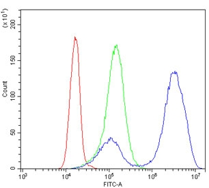 Flow cytometry testing of human K562 cells with GATA1 antibody at 1ug/million cells (blocked with goat sera); Red=cells alone, Green=isotype control, Blue= GATA1 antibody.