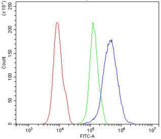 Flow cytometry testing of human 293T cells with PDX1 antibody at 1ug/million cells (blocked with goat sera); Red=cells alone, Green=isotype control, Blue= PDX1 antibody.