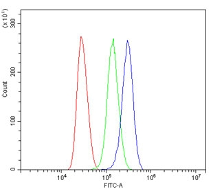 Flow cytometry testing of human Jurkat cells with ARG1 antibody at 1ug/million cells (blocked with goat sera); Red=cells alone, Green=isotype control, Blue= ARG1 antibody.