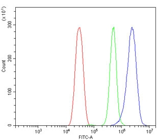 Flow cytometry testing of mouse HEPA1-6 cells with Cyp1a2 antibody at 1ug/million cells (blocked with goat sera); Red=cells alone, Green=isotype control, Blue= Cyp1a2 antibody.
