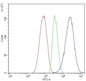 Flow cytometry testing of human HepG2 cells with APOA5 antibody at 1ug/million cells (blocked with goat sera); Red=cells alone, Green=isotype control, Blue= APOA5 antibody.