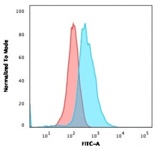 Flow cytometry testing of human Molt-4 cells with CD1a antibody (clone O10); Red=isotype control, Blue= CD1a antibody.