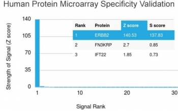 Analysis of HuProt(TM) microarray containing more than 19,000 full-length human proteins using HER2 ErbB2 antibody (clone HRB2/282). These results demonstrate the foremost specificity of the HRB2/282 mAb.Z- and S- score: The Z-score represents the strength of a signal that an antibody (in combination with a fluorescently-tagged anti-IgG secondary Ab) produces when binding to a particular protein on the HuProt(TM) array. Z-scores are described in units of standard deviations (SD's) above the mean value of all signals generated on that array. If the targets on the HuProt(TM) are arranged in descending order of the Z-score, the S-score is the difference (also in units of SD's) between the Z-scores. The S-score therefore represents the relative target specificity of an Ab to its intended target.