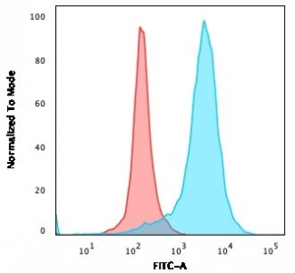 Flow cytometry testing of PFA-fixed human U-87 MG cells with LAMP-3 antibody (clone LAMP3/529); Red=isotype control, Blue= LAMP-3 antibody.