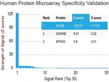 Protein array validation of the S100 beta antibody: Analysis of HuProt(TM) microarray containing more than 19,000 full-length human proteins using S100 beta antibody (clone S100B/1012). These results demonstrate the foremost specificity of the S100B/1012 mAb.<P><P>Z- and S- score: The Z-score represents the strength of a signal that an antibody (in combination with a fluorescently-tagged anti-IgG secondary Ab) produces when binding to a particular protein on the HuProt(TM) array. Z-scores are described in units of standard deviations (SD's) above the mean value of all signals generated on that array. If the targets on the HuProt(TM) are arranged in descending order of the Z-score, the S-score is the difference (also in units of SD's) between the Z-scores. The S-score therefore represents the relative target specificity of an Ab to its intended target.