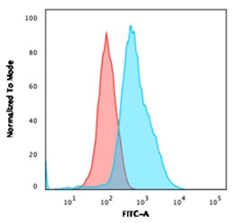 Flow testing of fixed and permeabilized human HeLa cells with Annexin A1 antibody (clone ANXA1/1672). Red=isotype control, Blue= Annexin A1 antibody.