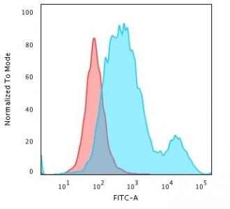Flow cytometry testing of PFA-fixed human HeLa cells with anti-Cytokeratin 18 antibody (clone SPM510); Red=isotype control, Blue= anti-Cytokeratin 18 antibody.