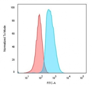 Flow cytometry testing of human Raji cells with anti-CD74 antibody (clone SPM523); Red=isotype control, Blue= anti-CD74 antibody.